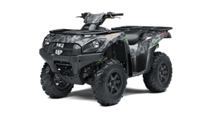 BRUTE FORCE® 750 4x4i 3/4 mobile navigation product view